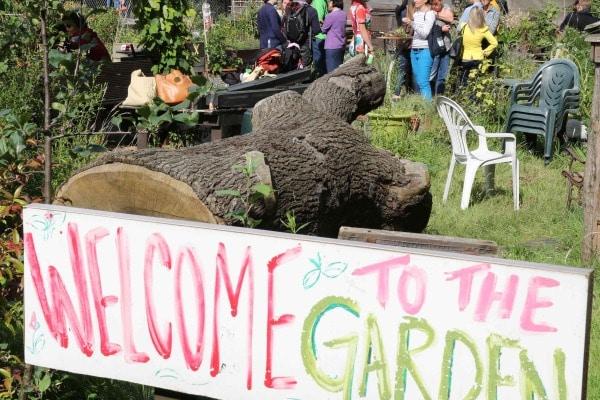 Greening Brownfield Garden